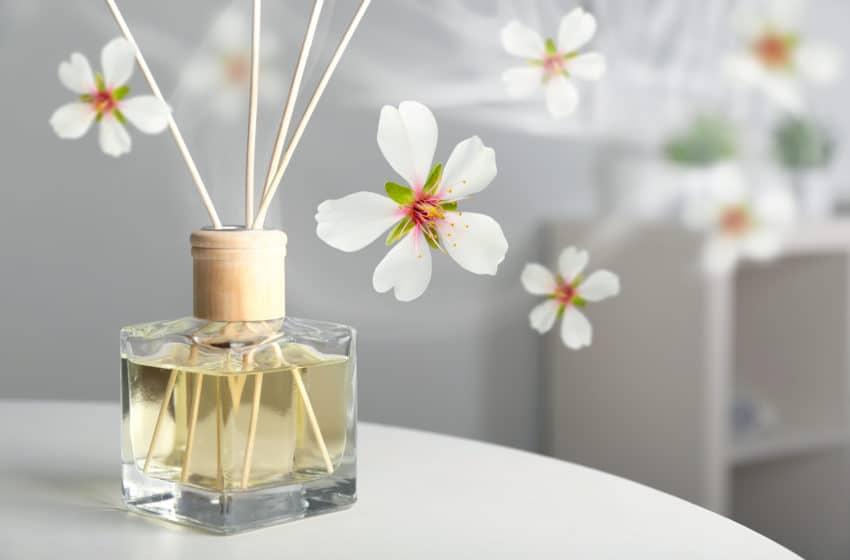 7 דברים שלא ידעתם על מפיצי ריח לעסקים